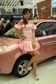 2009上海车展威麟车模