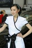 2009上海车展讴歌车模