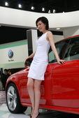 2009上海车展奥迪车模