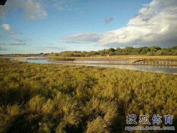 搜狐大视野  责编:何足道哉                 黑瞎子岛湿地公园秋景2