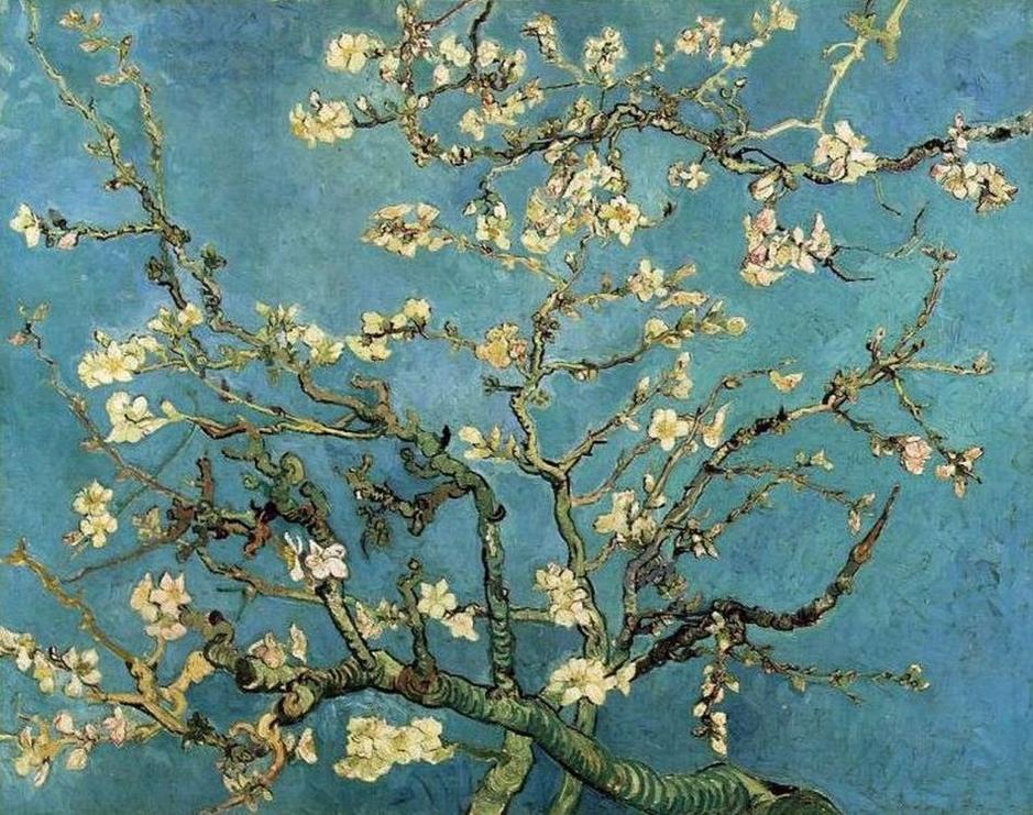 梦到杏树开花什么意思