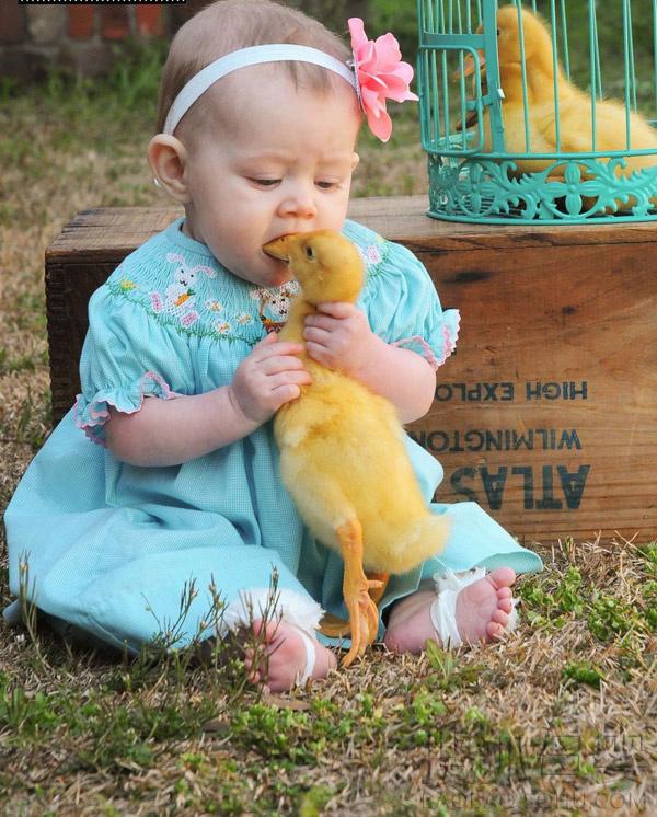 """男女互咬图_孩童与动物爆笑""""互咬""""瞬间5665405-母婴图片库-大视野-搜狐"""