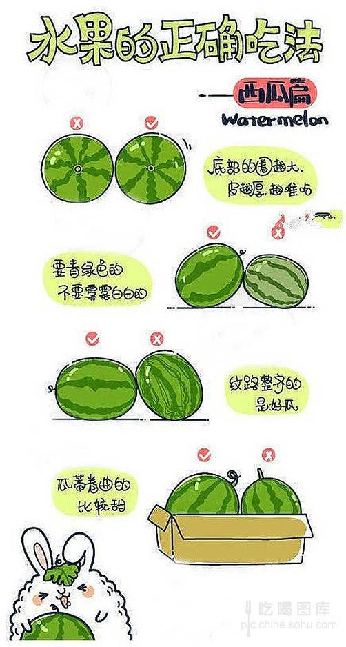 手绘卖萌版(组图)
