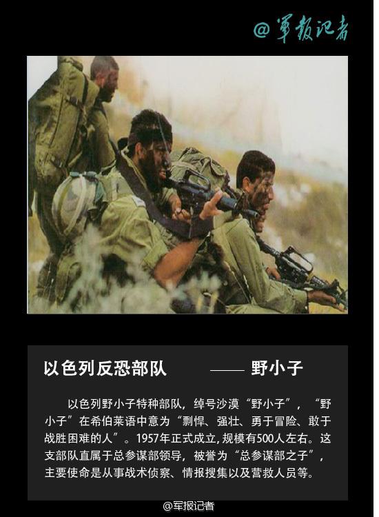 雪豹反恐部队手机壁纸