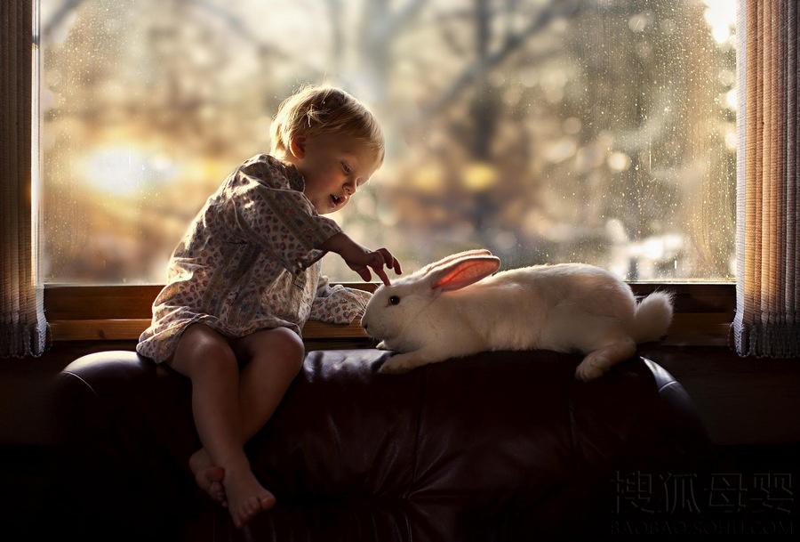 这些照片中孩子和小动物的有爱互动