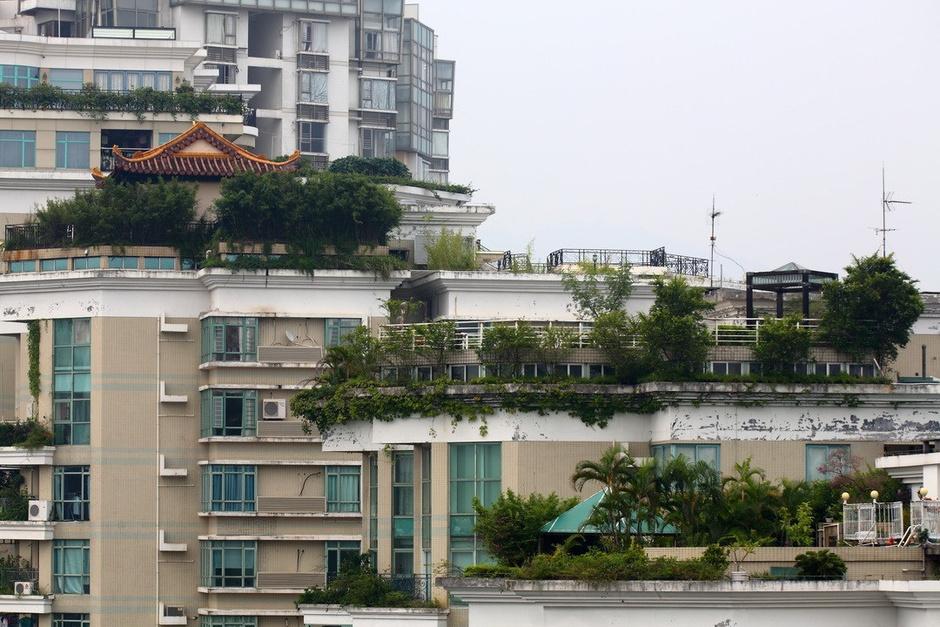 """上海一居民建""""空中别墅"""" 假山,鱼池全有"""