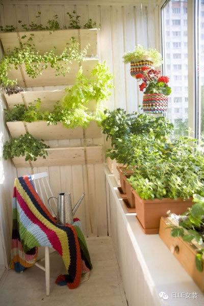 生活的角落 看牛人打造自己的温馨独立阳台7107061