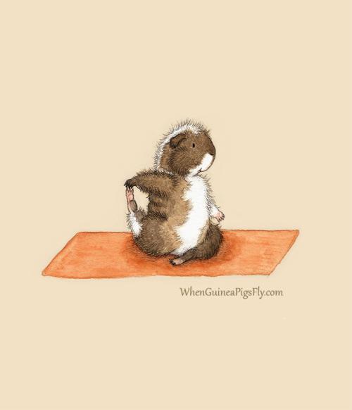 胖嘟嘟的小仓鼠是一个喜欢做瑜伽的好孩子,优雅的动作,憨厚可爱的表情