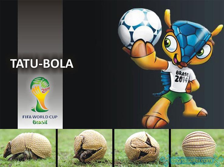 """这个可以蜷成一个球的小动物是巴西的特产,不过这个在中国被翻译成"""""""