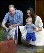 搜狐娱乐讯 2014年4月20日讯,澳大利亚,当地时间4月20日,威廉王子和凯特王妃参观悉尼塔瑞噶野...
