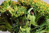 你有没有想过,自己房屋的造型是随处可见的食物的样子,是再普通不过的日用品的样子?是住在路边的易拉罐?...