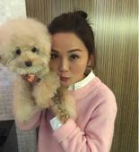 搜狐娱乐讯 1月4日,蔡卓妍(阿sa)在微博晒出自己养的小狗,并学狗狗做可爱表情。称小狗好动像自己。...