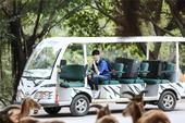 搜狐娱乐讯 近日,李宇春加盟湖南卫视真人秀《奇妙的朋友》的消息正式公布,作为首档人与动物亲密接触的真...