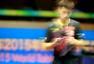 搜狐摄影记者回望苏州:2015世乒赛的喜怒哀乐