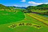从梦开始的地方出发,聚焦杭州乡村振兴之路.四