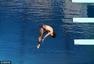 高清图:曹缘三米板晋级决赛 空中姿态完美极致