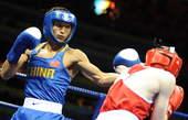 8月22日,在北京奥运会男子拳击48公斤级半决赛中,中国选手邹市明战胜爱尔兰选手帕迪・巴恩斯,挺进决赛。新华社/摄